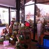 Flower Miffy 落合南長崎店
