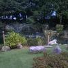 五十嵐邸 ガーデン